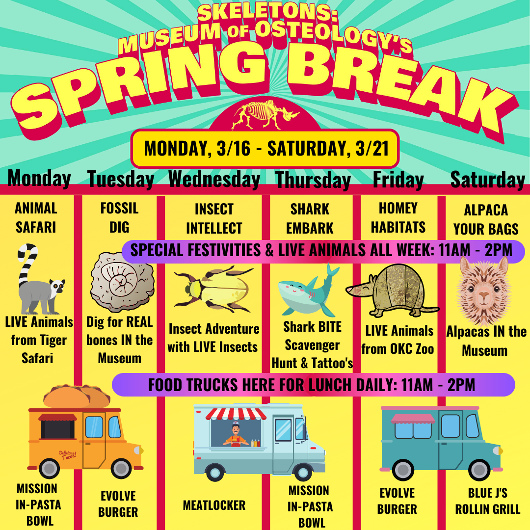 Cancelled - Spring Break Activities At Skeletons: Museum Of With What Kid Events Are In Oklahoma City On March 21
