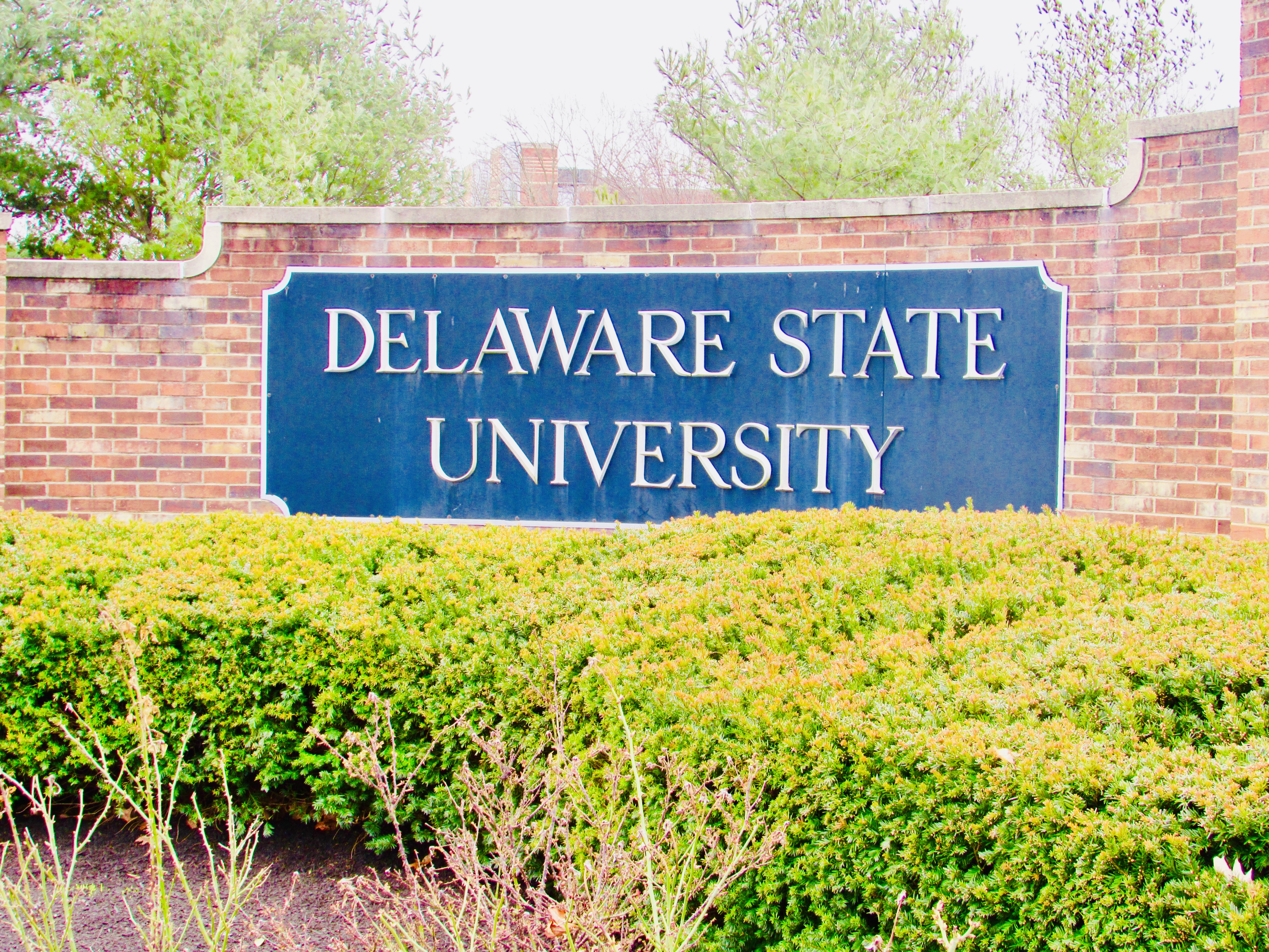 Dsu To Finish Spring Classes Online, No Campus Commencement For Delaware State University Holiday Schedule