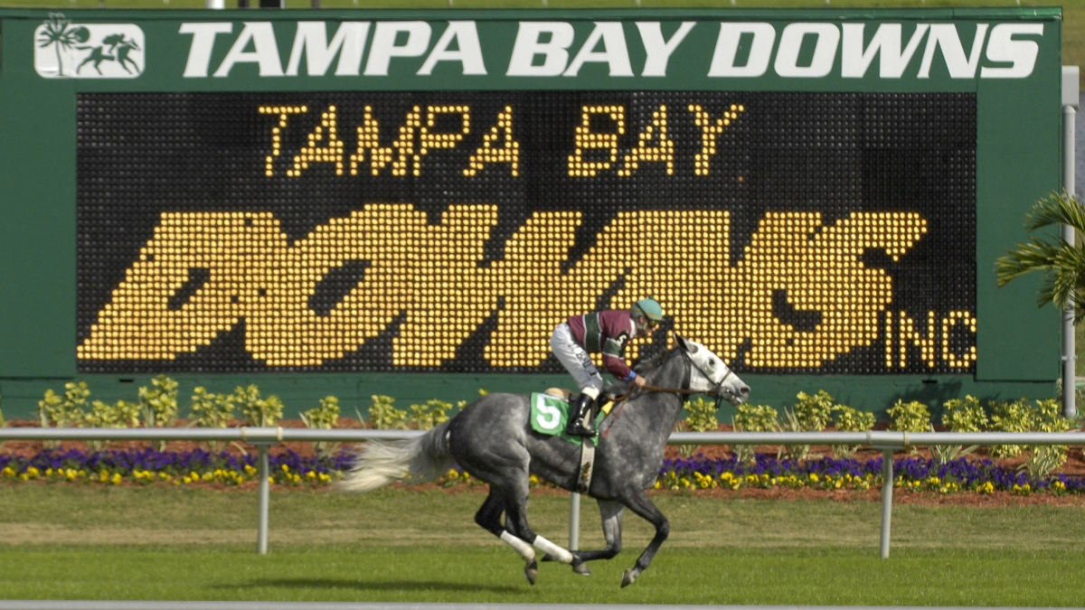 Horse Racing Picks For Wednesday, April 8: Best Value Bets In Tampa Bay Downs Schedule 2020