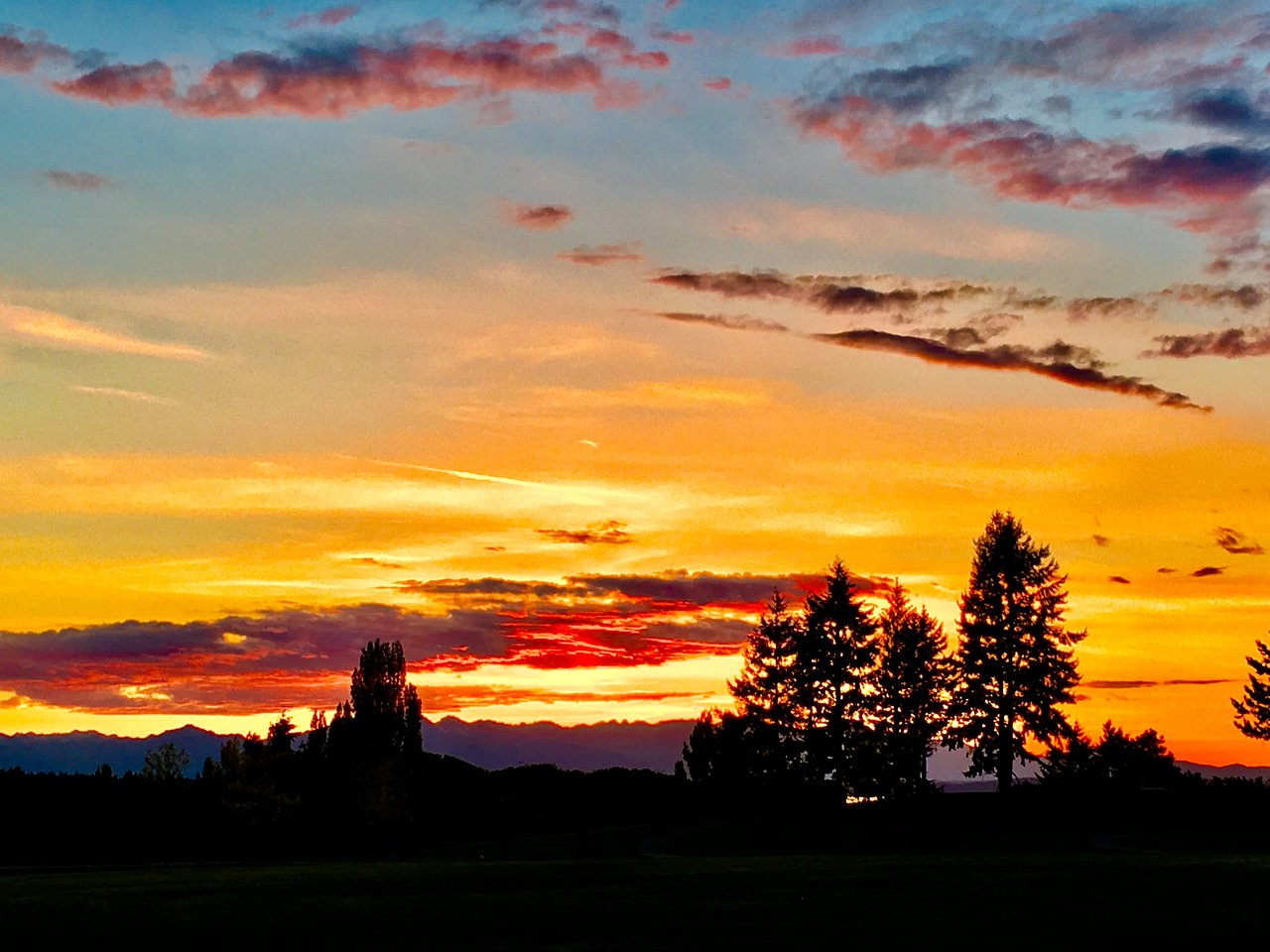 Jefferson Park (Seattle) – 2020 All You Need To Know Before In What Time Is Sunset In Zip Code 98446