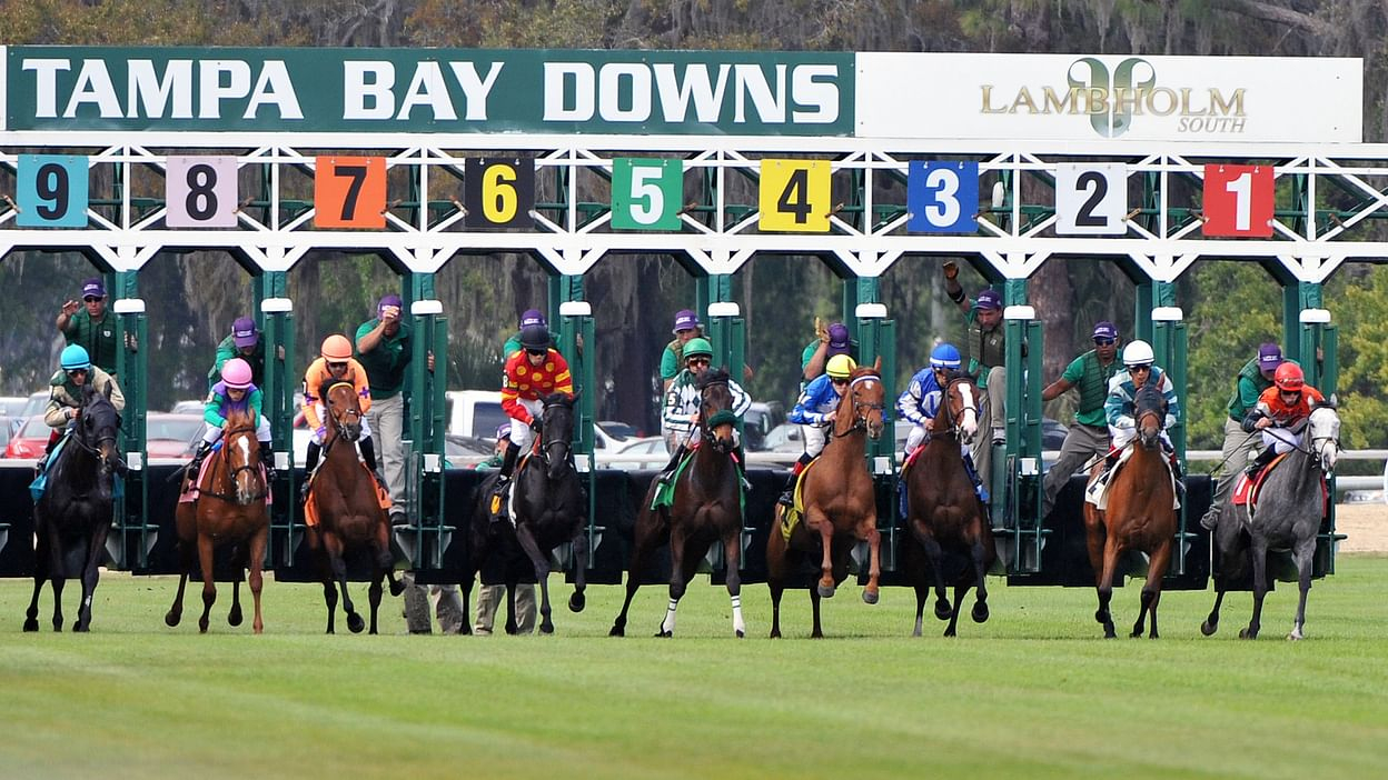 Tampa Bay Follows Fonner In Extending Meet Through May Within Tampa Bay Downs Schedule 2020