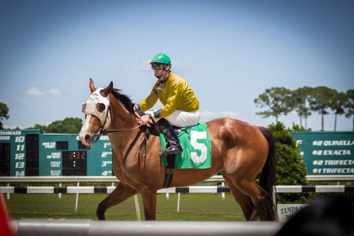 The History And Highlights Of Tampa Bay Downs | Tampa Bay's Inside Tampa Bay Downs Race Track Calendar