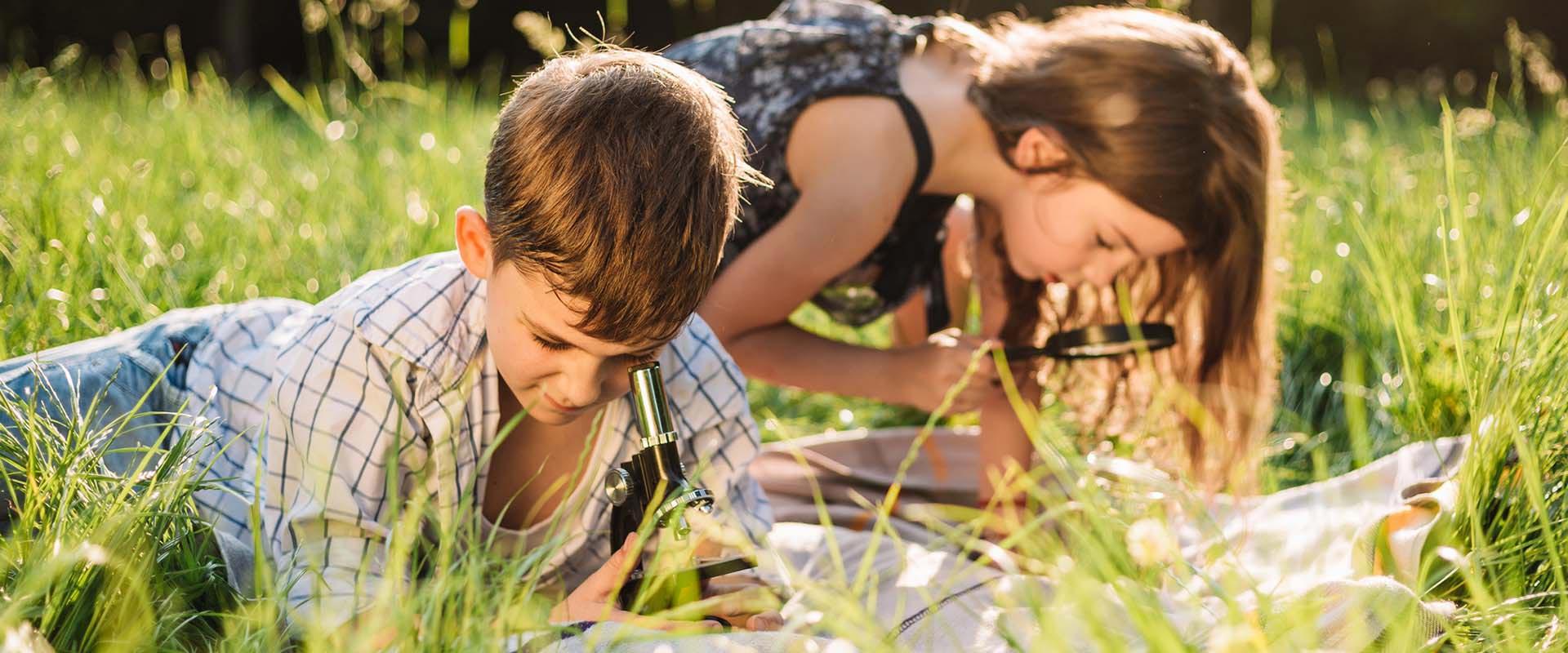 Dare County Schools Calendar 2020 And 2021 – Publicholidays For Dare County School Calendar 2021