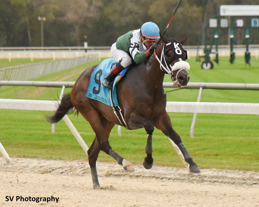 Hometown Favorite Well Defined Faces 10 In Tampa Bay Derby Throughout Tampa Bay Downs Racing Schedule