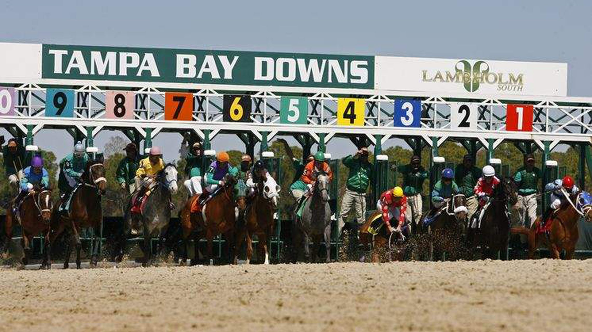 Tampa Bay Downs Closing Races To Fans After This Weekend Intended For Tampa Downs Race Dates