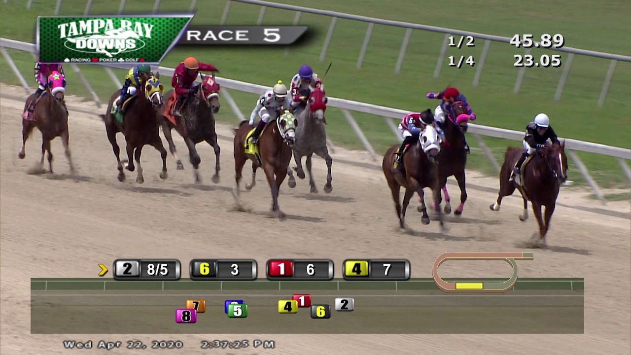 Tampa Bay Downs Replay 4/22/20 Race 5 Within Tampa Downs Race Dates
