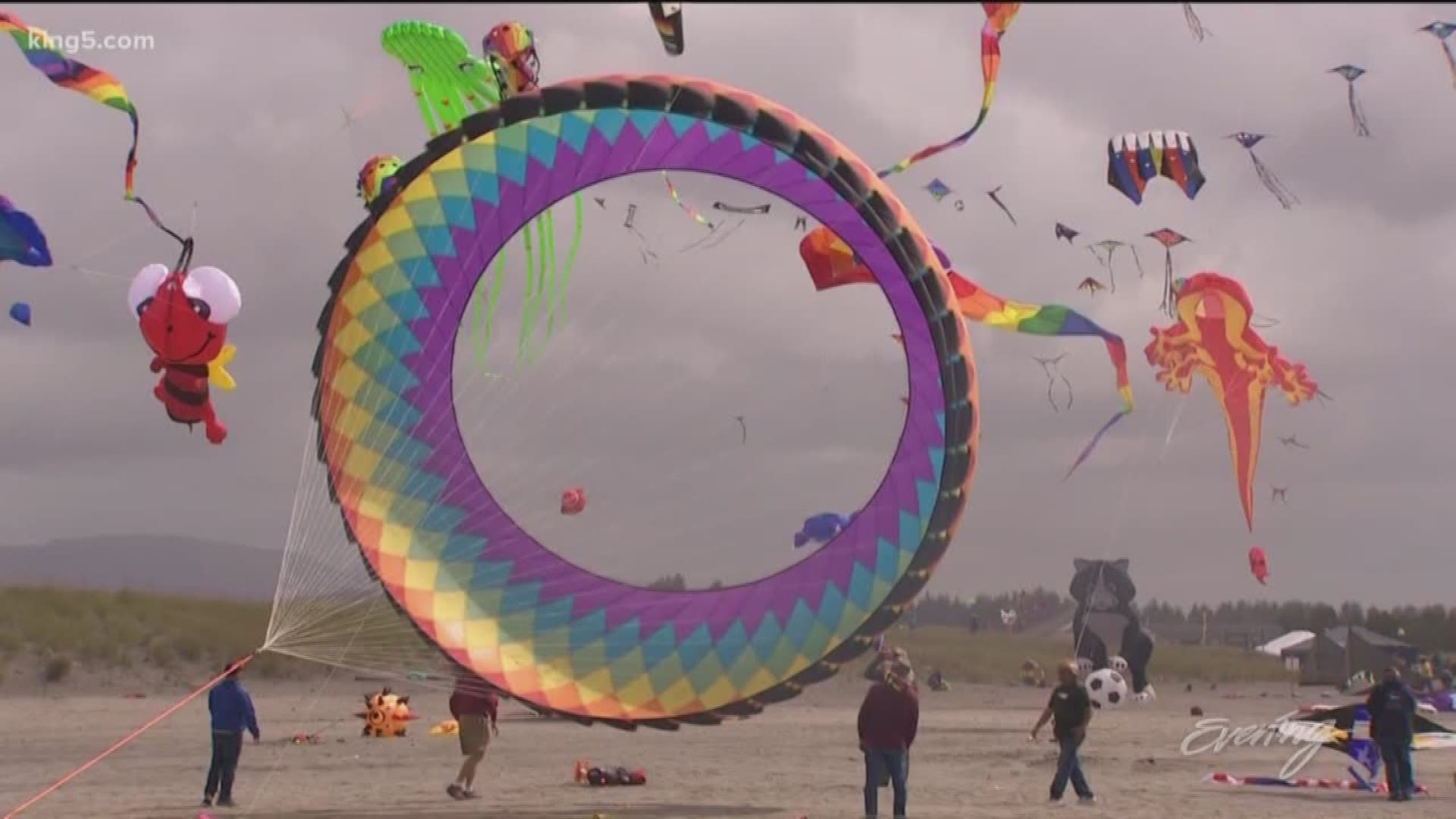 The Annual Washington State International Kite Festival In Long Beach Is  Fun For All Ages – King 5 Evening With Long Beach Wa Events Calendar 2021