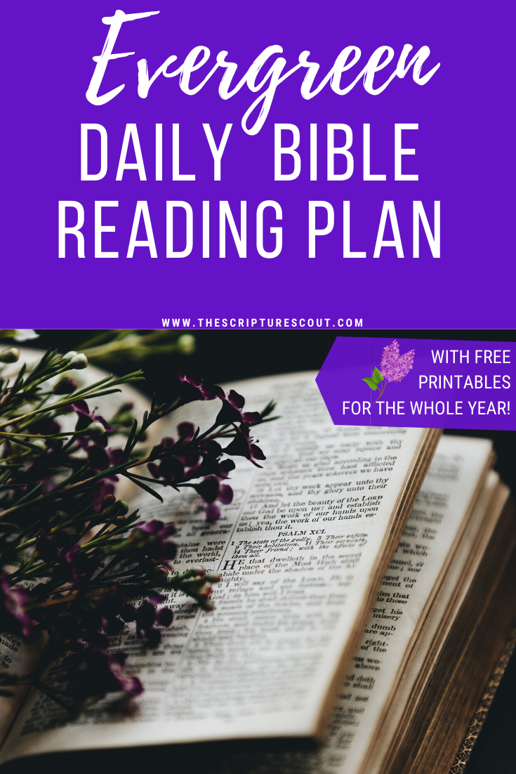 Your Personal 'evergreen' Daily Bible Reading Plan Should With Regard To Thematically Read The Bible In A Year
