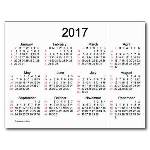 52 Weeks 2017 Mini Calendarjanz Postcard   Zazzle For 52 Week Printable Calendar Blank