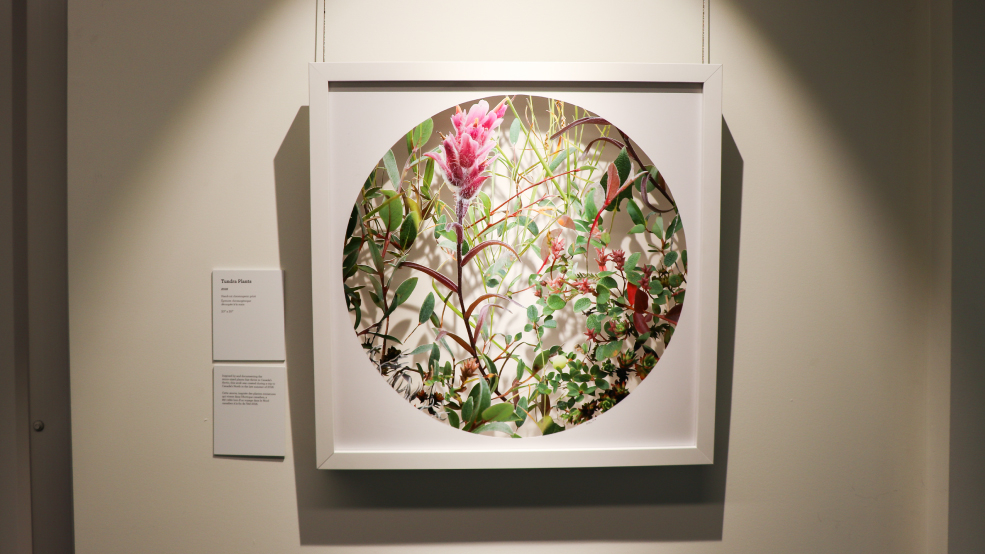 """Becky Comber """"Woodlands"""" Art Exhibit Up Until April 27Th Inside College Of Lake County Calendar 2021"""