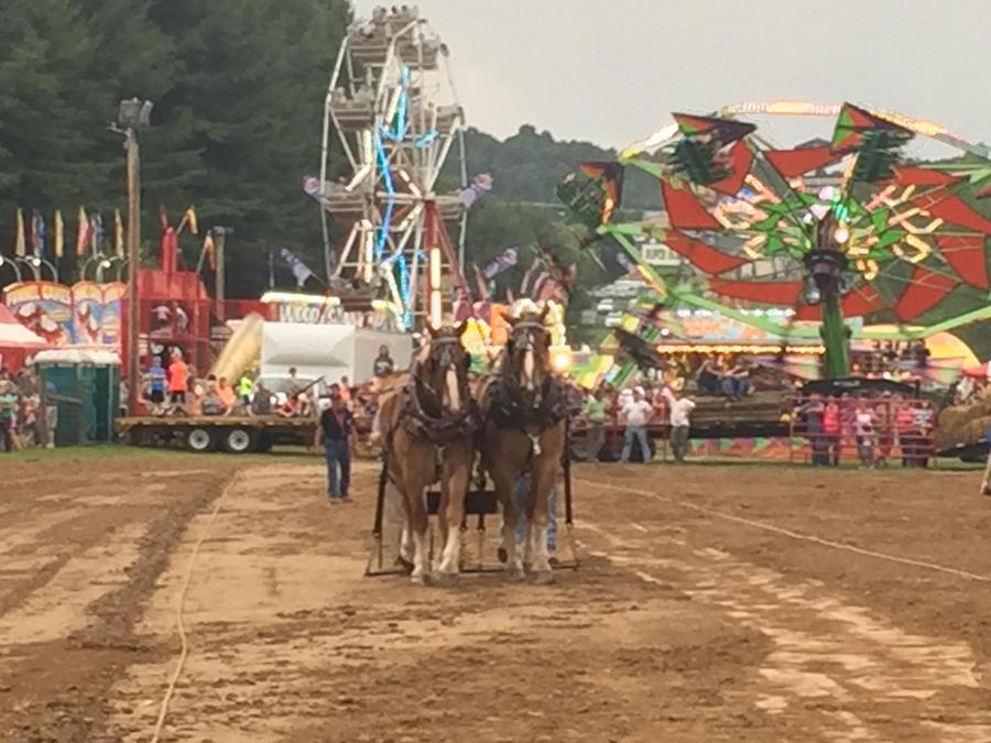 Carroll County Agricultural Fair – Hillsville, Va – Aug 21 For Carroll County Events 2021