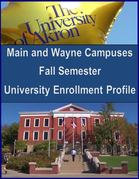 Institutional Research | Enrollment Data : The University For Akron University Fall 2020 Schedule