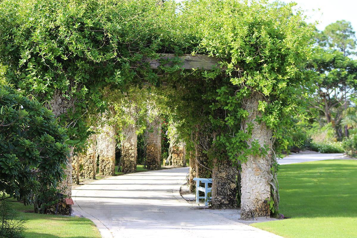 Naples Botanical Garden Calendar   Events, Classes With Regard To Naples Fl Outdoor Concerts