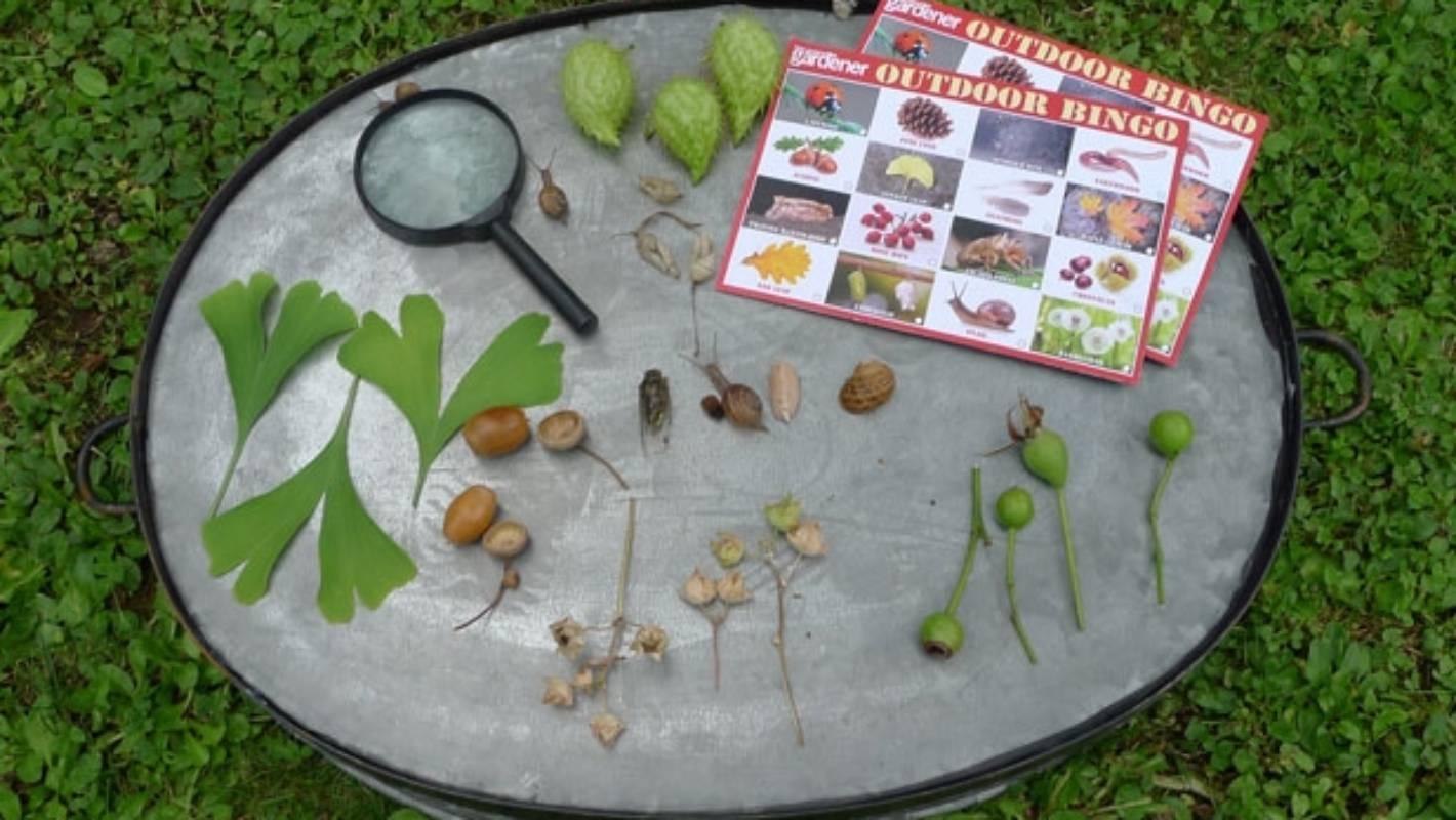 Play Outdoor Bingo: Turn An Autumn Walk Into A Treasure In Bingo At Turning Stone March 13