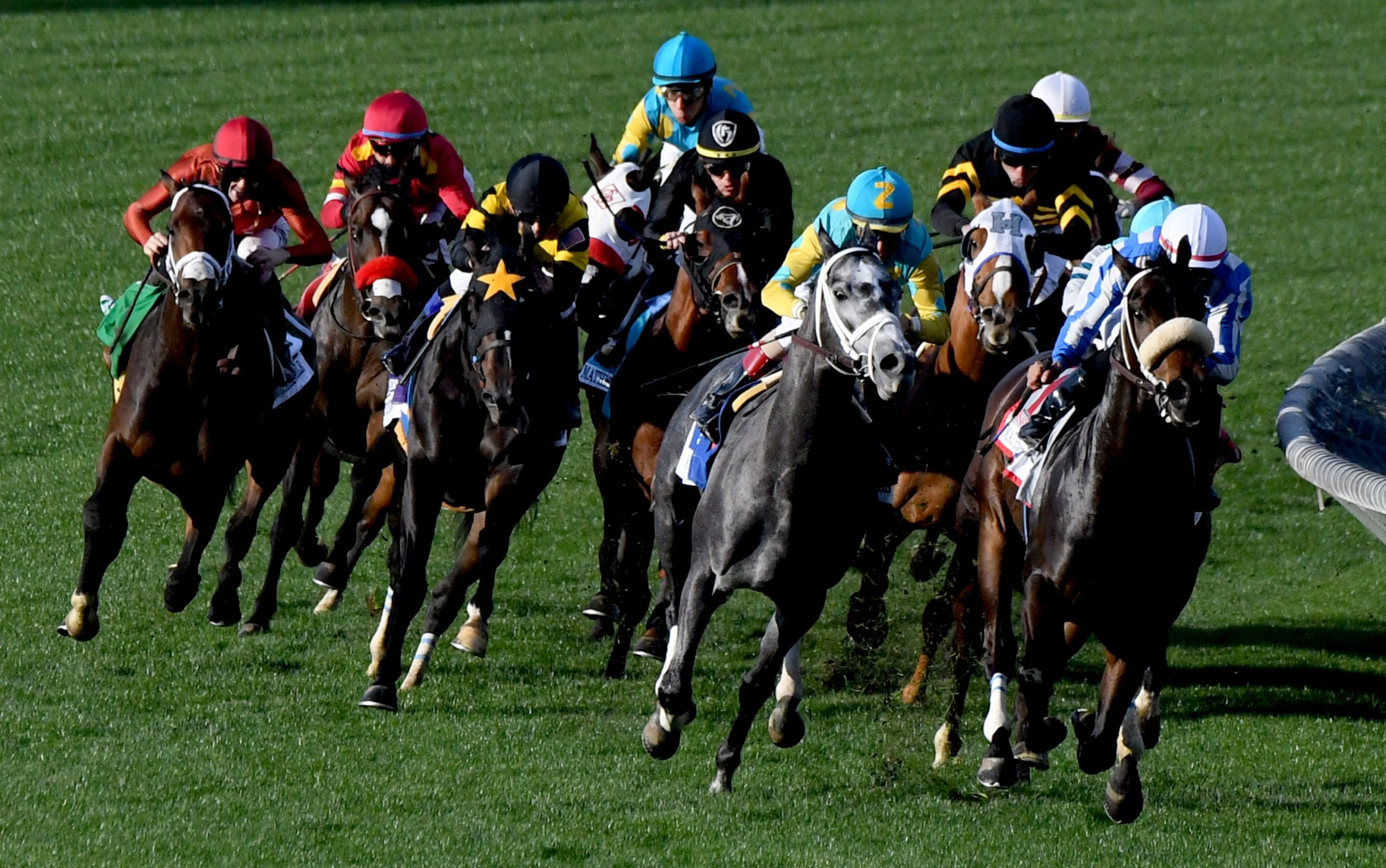 Road To The 2020 Kentucky Derby: February Prep Races For Tampa Bay Downs Schedule