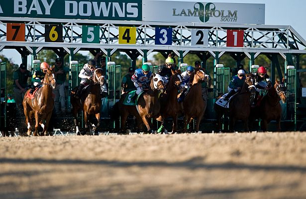 Tampa Bay Downs: Jockey Alderson In Serious But Stable Inside Tampa Bay Downs Racing Calendar