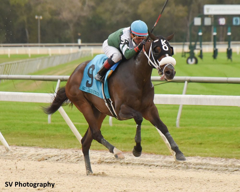 Tampa Bay Downs – Wikipedia Intended For Tampa Downs Race Within Tampa Bay Downs Calendar