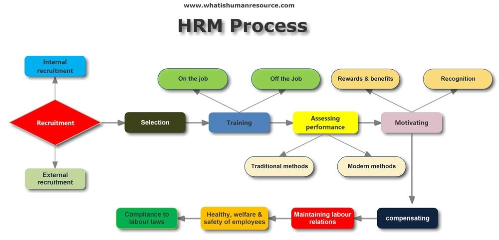 What Are The Functions Of Hrm. What Is The Main Functions With Regard To Acr Case In Point Archives