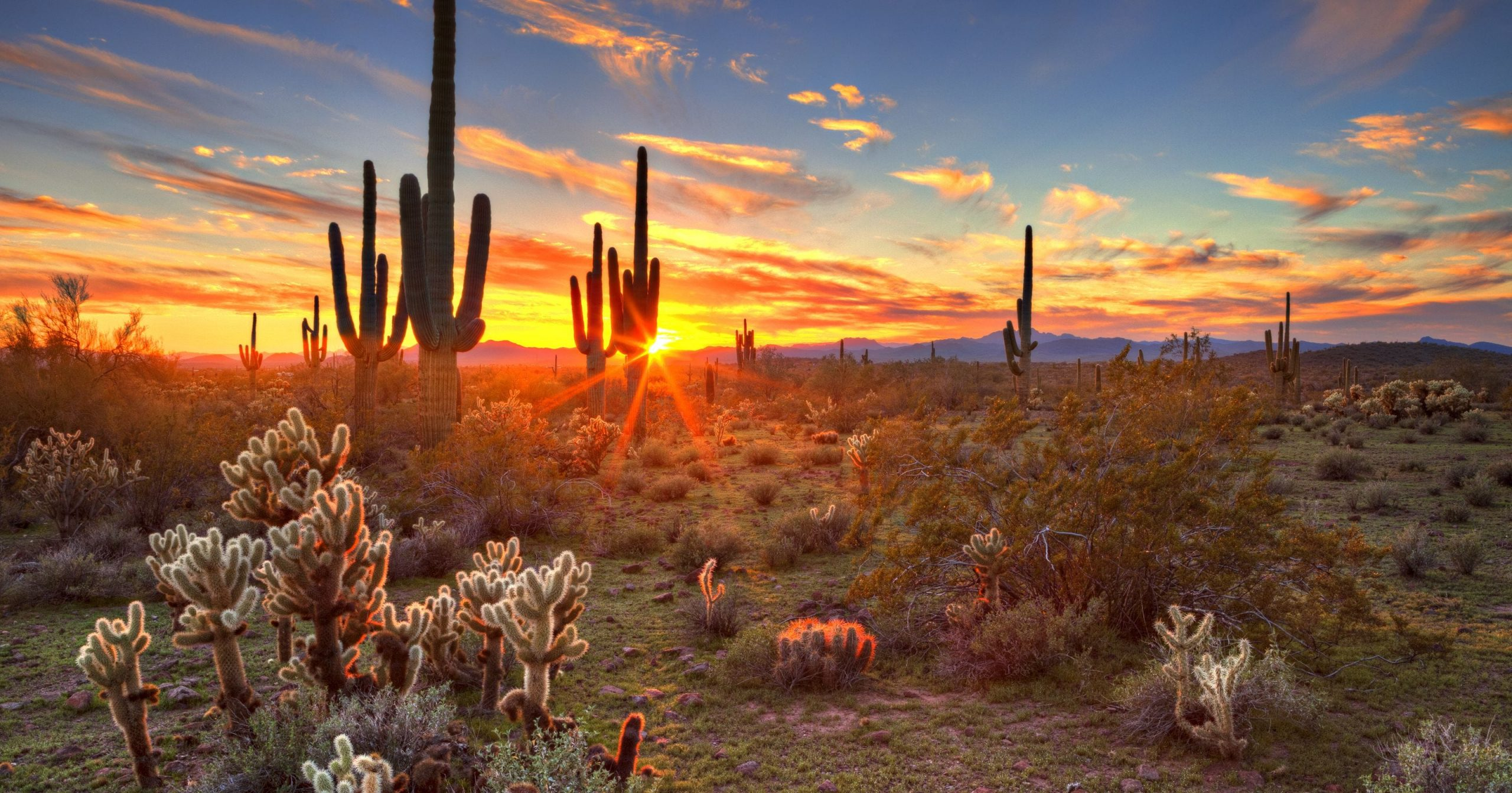 Why Arizona Doesn'T Observe Daylight Saving Time Intended For Sunrise And Sunset Times Printable