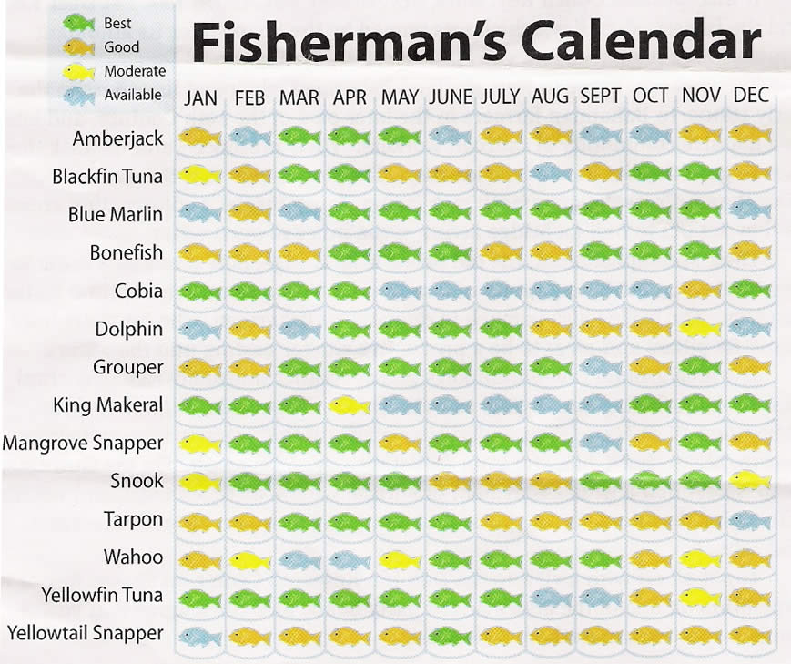 Heading To Islamorada April, What Can We Catch? – The Hull With Regard To 60 Calendar Days Back From Today