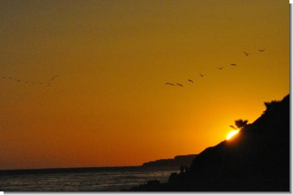 Sunrise And Sunset Timeszip Code | Printable Calendar With Regard To Sunrise Sunset Zip Code