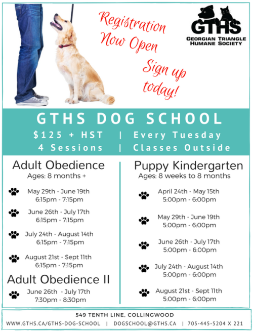 Gths Dog School – Summer Classes – Georgian Triangle Inside 445 Retail Calendar 2022