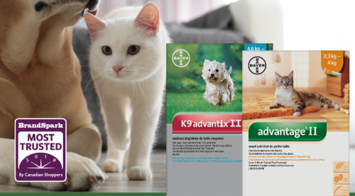 Protect Your Fur Family With Flea & Tick Advantage In 445 Retail Calendar 2022